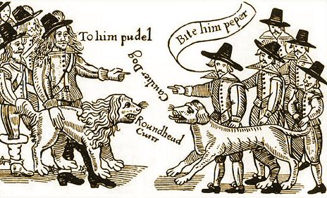 cartoon showing fight between Roundhead dog and Cavalier dog