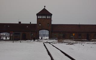 http://www.johndclare.net/images/Auschwitz%20photos/Birkenau_arrival.JPG
